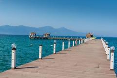 木树荫处在一个晴朗的海滩 天空蔚蓝和山在背景中 假期和假日在海滩概念 库存照片