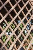 木格子树荫处 库存图片