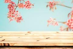 木桌上面与桃红色樱花花佐仓的在春季的天空背景 免版税图库摄影