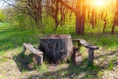 木桌和位子在森林里 免版税库存图片