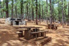 木桌和石格栅野餐和烤肉Canarian杉木森林的,埃斯波兰萨,特内里费岛 免版税库存照片
