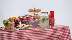 木桌和红色餐巾盖子室外党的 库存照片