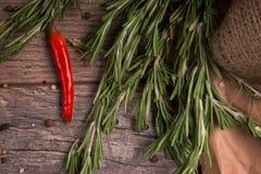 木桌背景的罗斯玛丽 以子弹密击红色 新鲜的迷迭香香料 辣素食主义者沙拉 墨西哥烹调概念 免版税图库摄影
