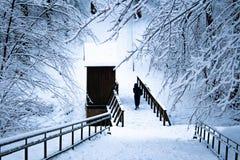 木桥在一个森林里在冬天,与妇女 库存照片