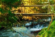 木桥在一个森林里通过山河,在狂放的概念旅行,拷贝空间, 免版税库存图片