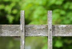 木桥在地衣和青苔盖的篱芭板条 免版税库存图片