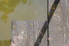 木桥在地衣和青苔盖的脚板条 免版税图库摄影