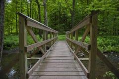 木桥在森林 免版税库存图片