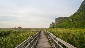 木桥在湖, Khao山姆Roi Yod国家公园 图库摄影