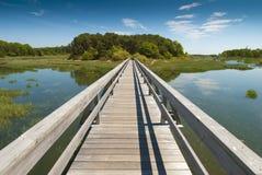 木桥梁的透视图 图库摄影