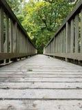 木桥通过Forrest 库存图片