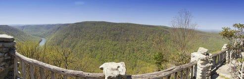 木桶匠岩石状态森林全景 库存照片