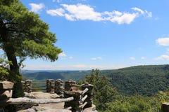 木桶匠的岩石状态森林 图库摄影