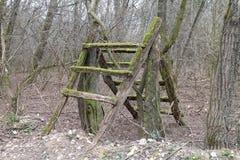 木梯子在伯爵夫人thory Elisabeth BÃ的¡附近, ÄŒachtice城堡的森林里  免版税图库摄影