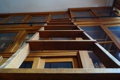 木梯子在图书馆里 库存照片