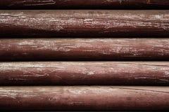木棕色射线 免版税图库摄影