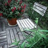 木椅子和红色倒挂金钟 图库摄影