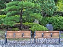 木椅子在日本庭院里 免版税库存图片