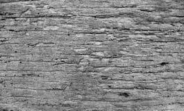 木楼层背景 库存照片