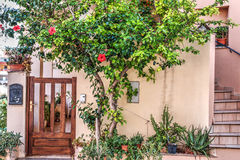 木槿植物买一个美丽如画的房子 免版税图库摄影