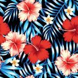 木槿红色和棕榈叶蓝色无缝的背景 免版税库存图片