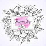 木槿花和叶子花束  免版税库存照片