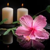 木槿,卷须西番莲的美好的温泉概念 免版税库存照片