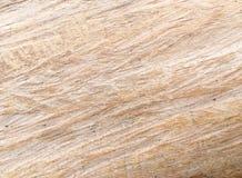 木模式纹理 库存照片