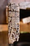 木模式 免版税图库摄影
