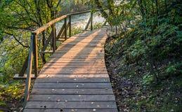 木步行道路在Kemeri国家公园,拉脱维亚 免版税库存照片