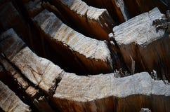木残破的破裂的纹理结构树的木头 库存照片
