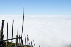 木泄漏,天空,云彩, 库存图片