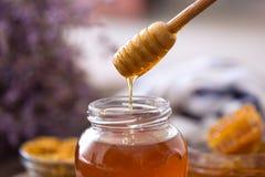 从木浸染工的滴下的甜新鲜的蜂蜜 图库摄影
