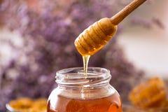 从木浸染工的滴下的甜金黄蜂蜜 库存图片