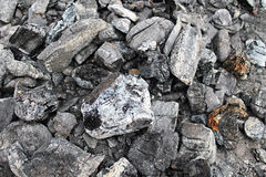 木炭宏指令照片 免版税图库摄影
