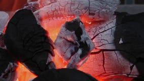 木炭火燃烧 影视素材
