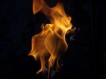 木炭火 库存图片