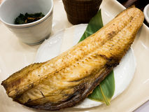 木炭烤鲭鱼 库存图片