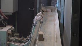 木燃料生物量冰砖 股票视频