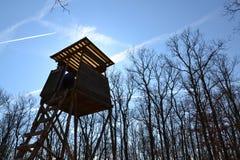 木猎人高位子在有蓝天的森林里在背景中 图库摄影