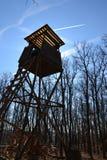 木猎人高位子在有蓝天的森林里在背景中 库存照片