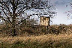 木猎人高位子在森林掩藏 库存图片