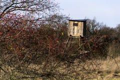 木猎人高位子在森林掩藏 库存照片