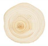 木环形 库存图片