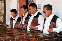 木琴球员 免版税库存照片