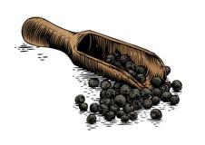 木瓢用黑胡椒 向量例证