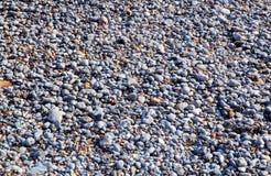 木瓦或石头在海滩 免版税库存图片