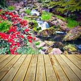 木甲板地板和红色杜鹃花花 库存照片