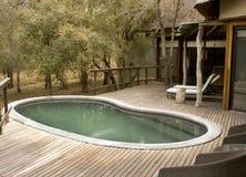 木甲板的池 图库摄影