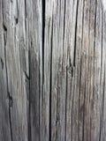 木电线杆 免版税库存照片
